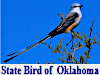 Birds of Oklahoma