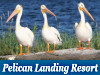 Pelican Landing Vacation Resort