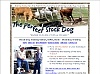 Perfect Stock Dog Training Program
