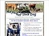 Perfect Stock Dog Training Program